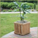 mini wood planter for tree in outdoor area