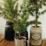 modern-nice-DIY-creative-wonderful-cool-indoor-tree-planter-box-with-cup-made-metal-concept-design-with-glass-jar-concept-design