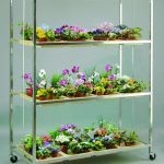 modern-nice-attractive-cool-awesome-shelve-hanging-plants-ith-metal-frame-design-with-three-levels-dsign-for-beautiful-colorful-flowers