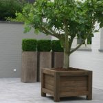 simple-medium-nice-classic-traditional-wood-planter-box-with-large-box-design-for-big-tree-for-home-garden-decoration