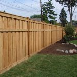 clean finished wood lattice fencing  in the backyard