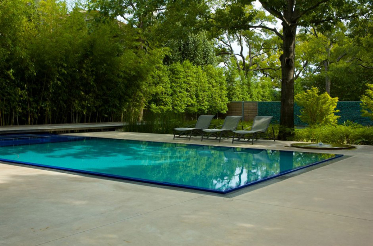 Fancy Rectangle Pool Designs In Contemporary Style With Lounge Chairs Plus Shade Green Plants And