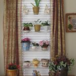 floating transparent glass plant shelves for indoor that is in the front of window white window shutters and curtains