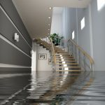 flooding basement with stairs and gray white wall and plant