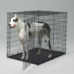Midwest 1154U Extra Large Dog Crate Single-Door Black Wire