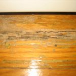 termites in furniture on the wooden floor