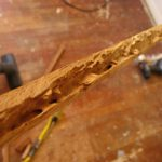 termites in wooden furniture picture 1