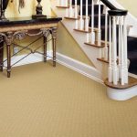warm and thick rug or carpet flooring for basement