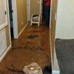 water damage flooding basement