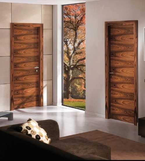Interior Door Designs for Homes - HomesFeed