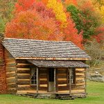 Simple and small cabin without grid use with colorful trees' leaves