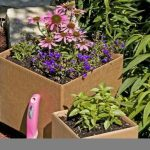 adorable tan concrete planter boxes design with colorful decorative plants aside lush vegetation