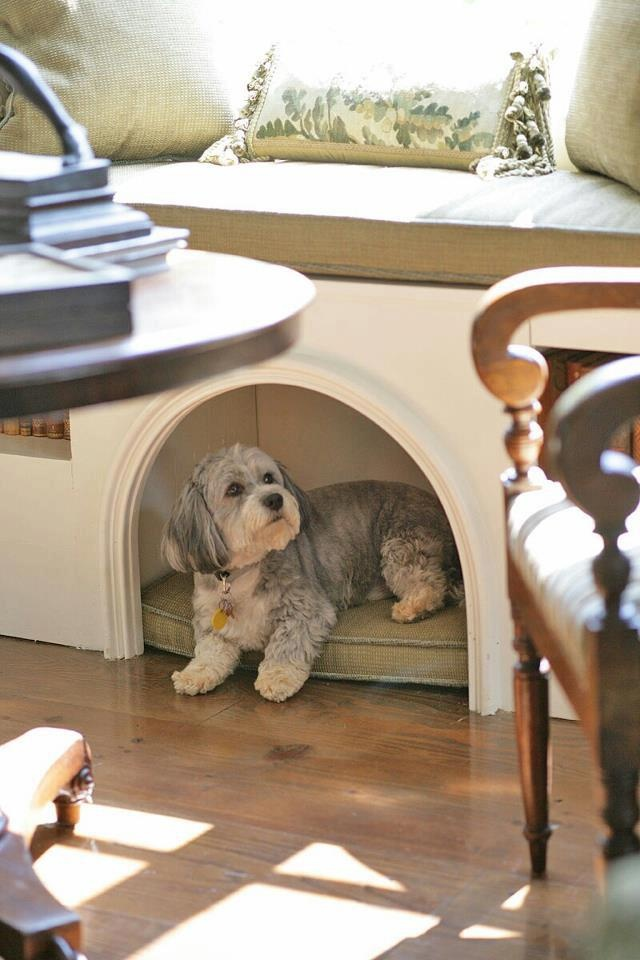 Fine Sweeten Upon Your Dogs Life With These Dog Window Perches Short Links Chair Design For Home Short Linksinfo