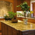fresh-elegant-natural-green-marble-look-countertop-with-grey-glassy-concept-and-wooden-material-with-plant-decoration-for-kitchen-design