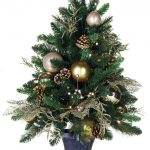 royal pre lit tabletop christmas trees in green combined with golden and white bauble and dried pinecones and black pot