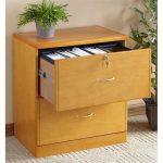 small boxy flat file ikea cabinet design with metal handle and key and potted plant on white textured area rug