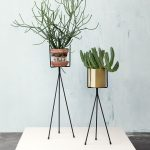unique and simple interior greenery with potted plants on tripod poles made of metal on white rug