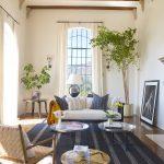 beams carpet chair sofas pillows table plants