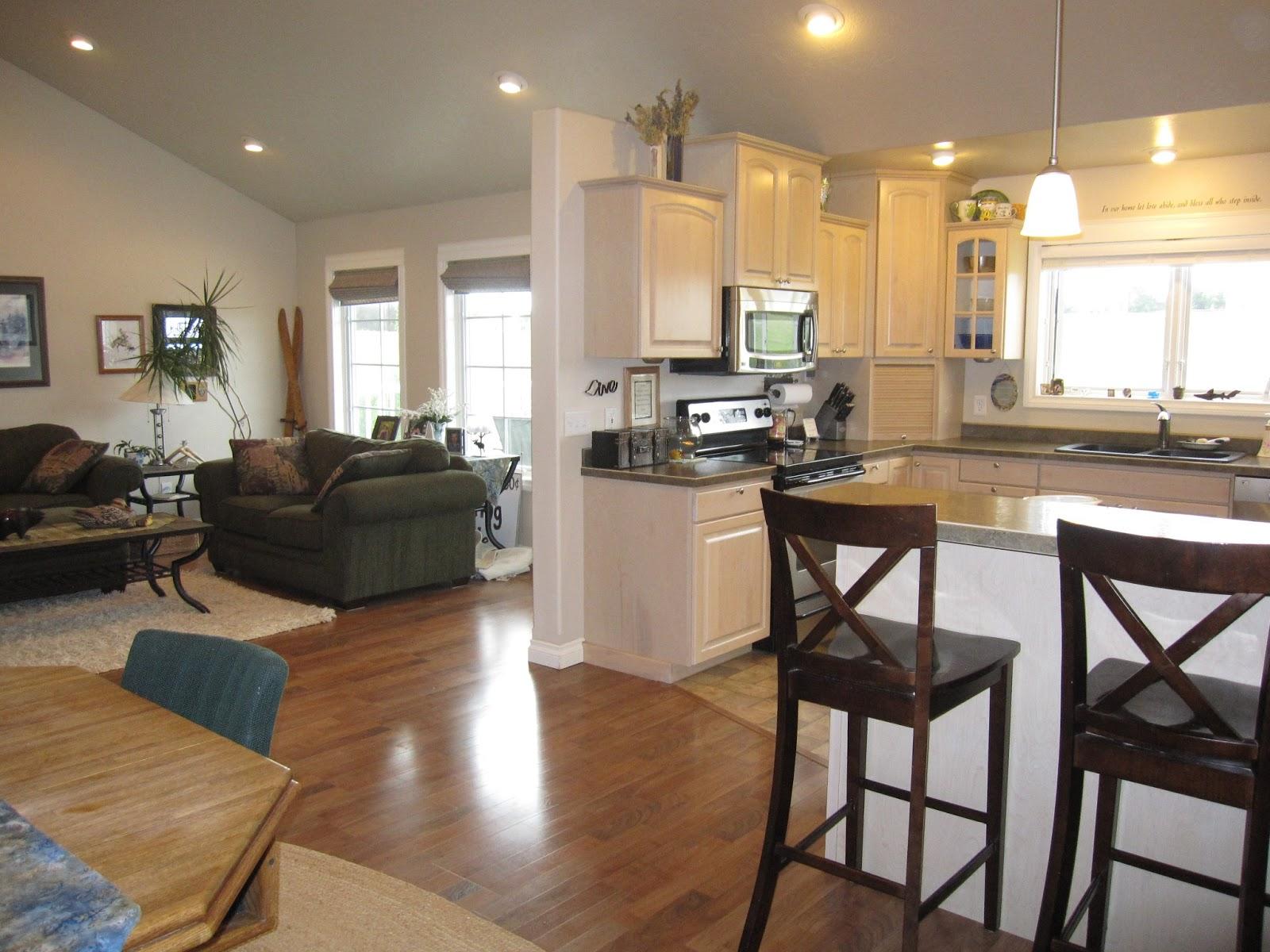 Kitchen Living Room Combo Ideas – HomesFeed
