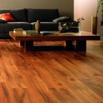 Clean Red Pine Flooring Living Room Bold Gray Sofas Gray Red Cushions Decorative Flower