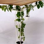 gorgeous indoor plant design idea with small potted plant with wooden table for clematis