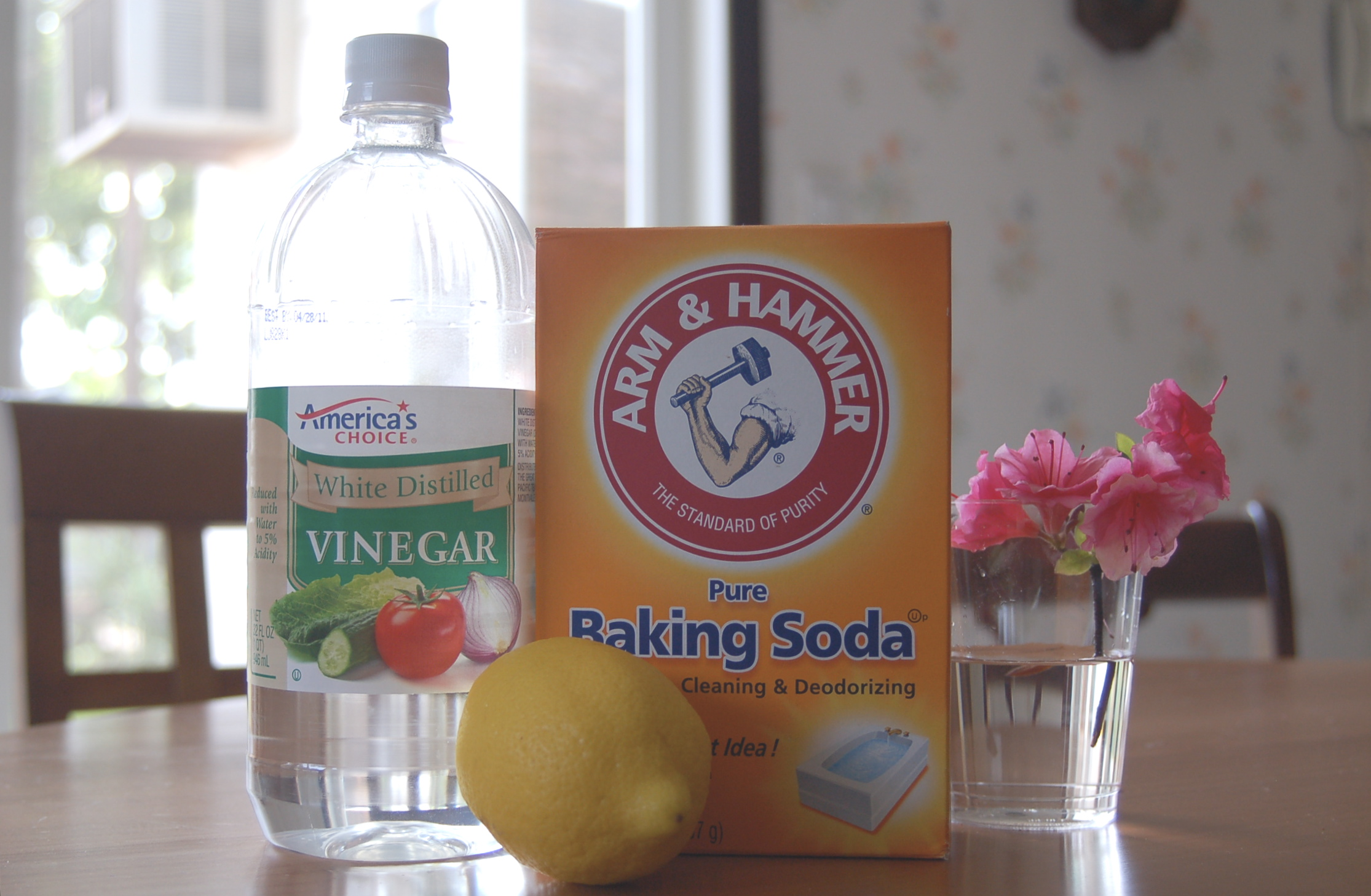 Get rid of pet odor with these two easy homemade sprays for Vinegar bathroom cleaner