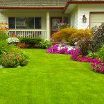 landscape flower home