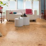 modern cork flooring and dogs with white sofa and wooden end table plus soft rug and standing lamp plus book case