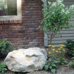 one large landscape rock at front yard beautiful white and yellow flowers