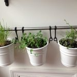 simple apartment herb garden design in the interior with vintage white pots and iron pole hanger on white wall