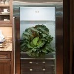 single door glass front refrigerator for home  dsign with stainless steel material aside wooden cabinetry
