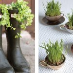 unique designed apartment interior herb garden idea on black boots and white small cups