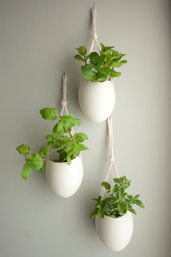 Unique Triple Hanging Indoor Plants Idea In White Tone With Traditional Rope On Wall