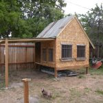 Chicken Coop Building