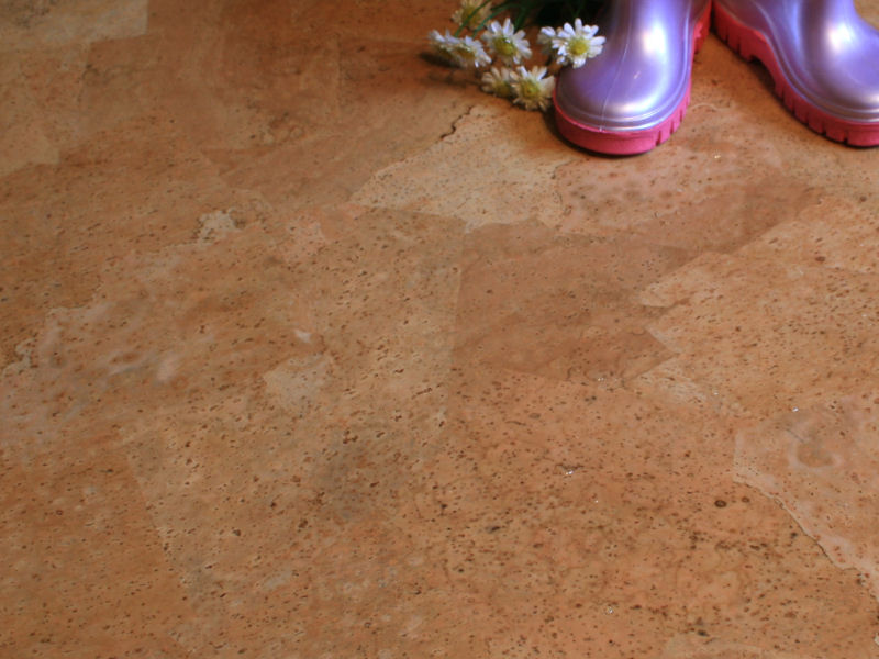 Cork flooring pros and cons homesfeed for Sustainable cork flooring