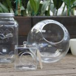 Random Shape Of Terrarium Glass