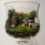 Terrarium Glass Accessories
