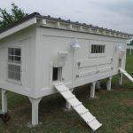 White Wooden Chicken Coop
