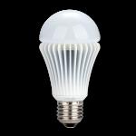 a LED bulb product