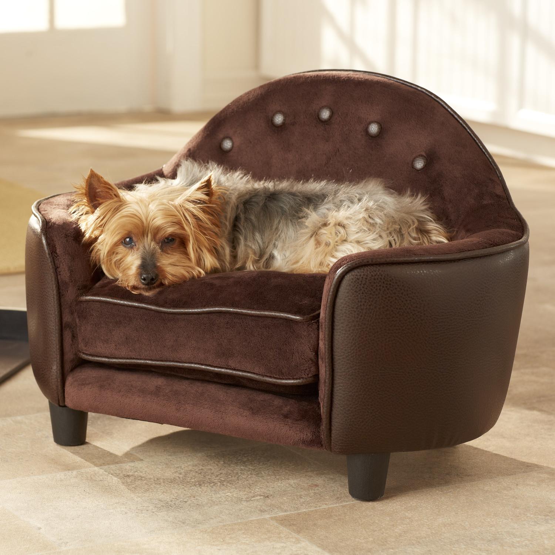 Dog Sofas And Chairs Uk memsahebnet