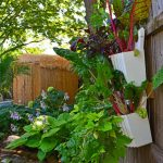 fresh green garden and home catalog design with wall white pot idea and plants and wooden siding fence