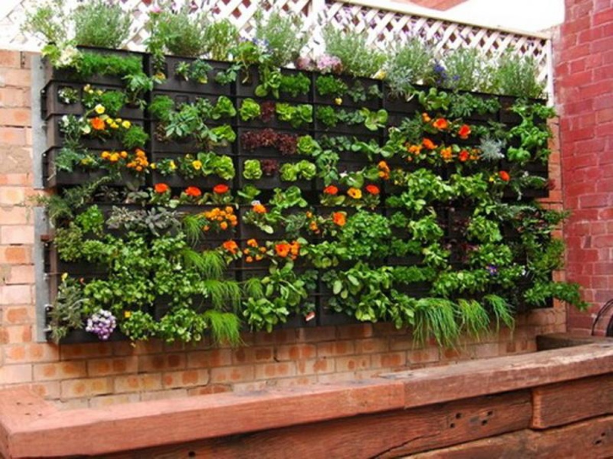 Best vertical indoor plant from home and garden catalog for Home vertical garden