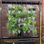 Stylish Indoor Home And Garden Catalog Idea With Brick Siding And Black Metal Stand And Wire And Shrub