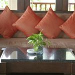 elegant orange rustic cushion design with creamy sofa idea with wooden glass coffee table and indoor plant and glass window