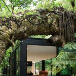 Gorgeous Black Forest House Desin Hovering Beneath Big Tree Branch With Open Plan And Modern Furniture