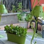 gorgeous fresh and green succulent planter idea with unique green shaded lamps and chair and concrete patio