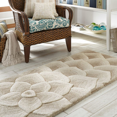nice living room rugs new arrival of rugs from pier one homesfeed 13122
