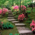 unique multilevel small japanese garden design with pink flower and concrete pathway and grassy area