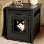 Cat Litter Box Ideas In Wooden Side Table