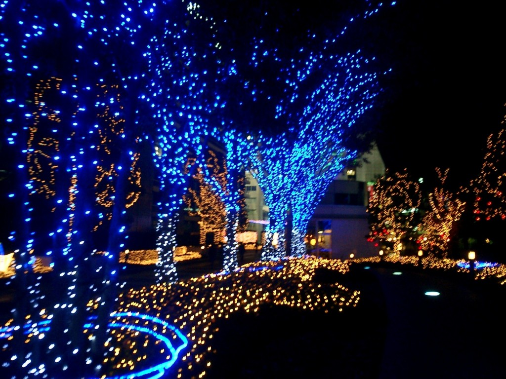 Led Blue And White Christmas Lights For Tree